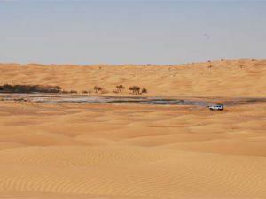 circuit sud tunisien