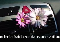 Garder la fraîcheur dans une voiture