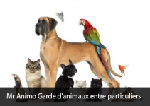 Mr Animo Garde d'animaux entre particuliers